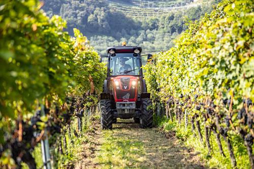 valtra-f-series-italy-wine-yard-img-2019-hires-tif-2899_165243 (1)